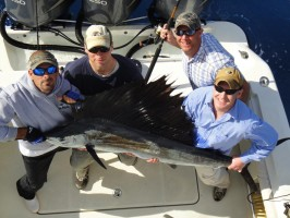 Awesome Marlin sport fishing in Islamorada, Florida